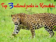 2 days Mikumi National Park