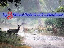 5 Night in Uttarakhand Go 4 Vacation