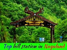 Kanatal Dhanaulti Tour Package