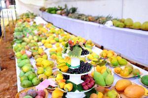 10 Must-Visit Festivals That Celebrate India s Fruits & Veggies