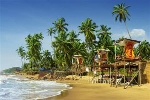 Go Goa And Gone