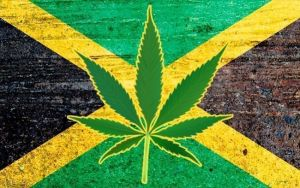 Travel experts say Jamaica could be king of marijuana tourism