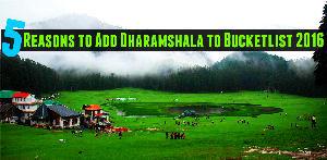 5 Reasons to Add Dharamshala to Bucketlist 2019
