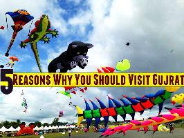 5 Reasons Why You Should Visit Gujarat
