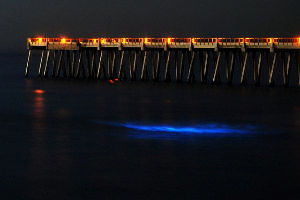 Incredible Places Where The Ocean Glows