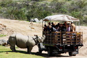 World's Best Drive Through Safari Parks