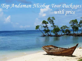 Top Andaman Nicobar Tour Packages with Price