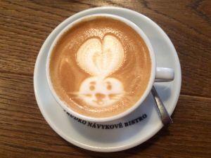 Best cafes in Pelling – 6 Most popular restaurants in Pelling