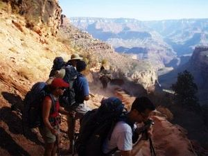 Popular City Landmarks for Hiking Trails in USA