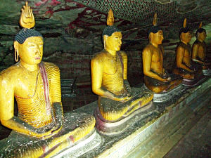 Top 5 places to see in Srilanka