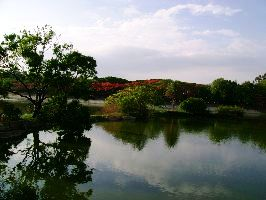 Government Frames Measures To Protect Lakes In Bengaluru