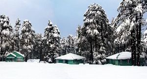 Best Time to Visit Patnitop