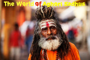 The World of Aghori Sadhus: Finding Purity in the Filthiest