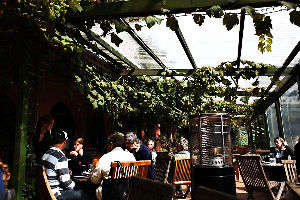 Wining Out In The Best Vineyards Of Auckland, New Zealand