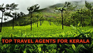 Top 15 Travel Agents for Kerala in 2017