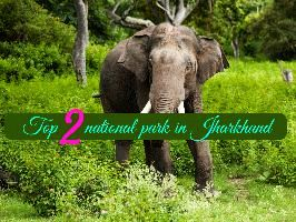 Top 2 national park in Jharkhand