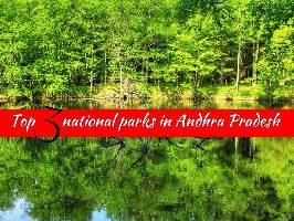 Top 3 national parks in Andhra Pradesh