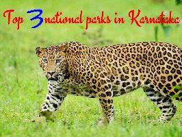 Top 3 national parks in Karnataka