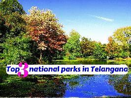 Top 3 national parks in Telangana