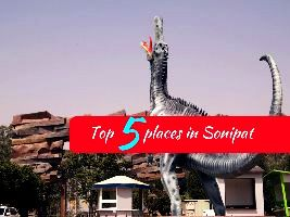 Top 5 places in Sonipat