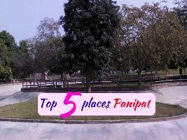 Top 5 Amusement Parks In Delhi Ncr Hello Travel Buzz