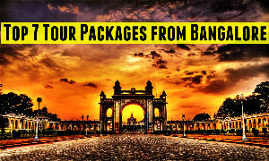 Top 7 Tour Packages from Bangalore