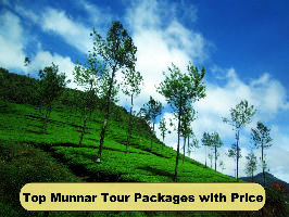 Top Munnar Tour Packages with Price