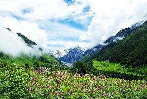 Valley Of Flowers National Park Opened For Travelers In Uttarakhand