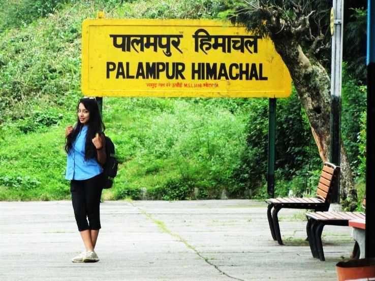 Explore the tea gardens of Palampur