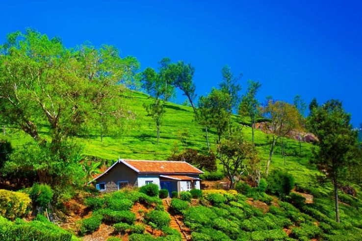 Road Trip from Bangalore To Ooty