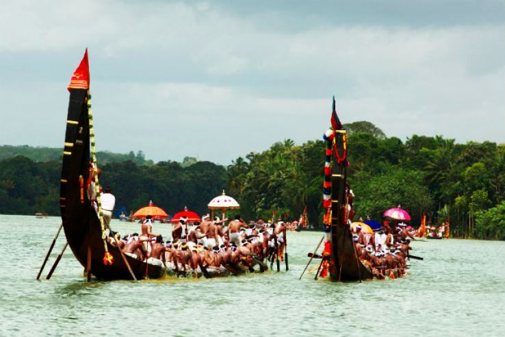 Enjoy The Snake Boat Racing In Gods Own Country