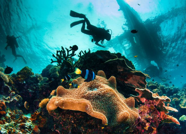All about the scuba diving locations across the world
