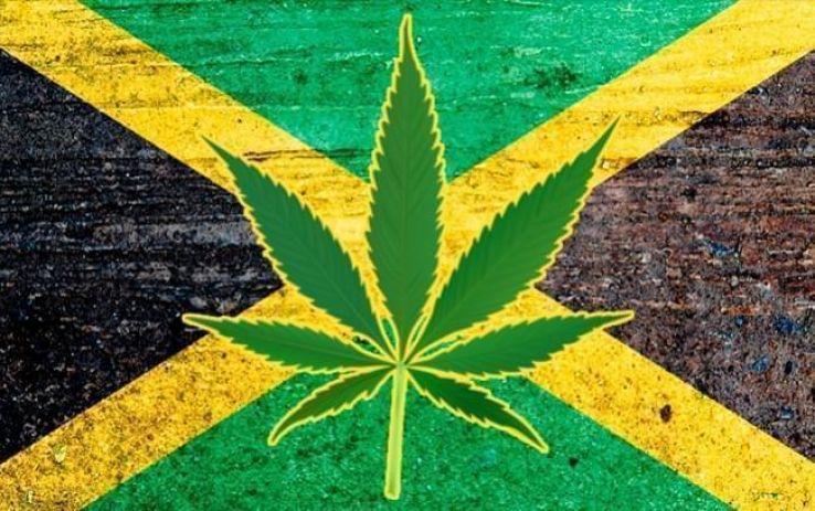 Travel experts say Jamaica could be king of marijuana tourism