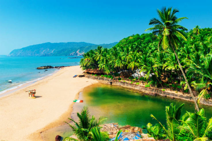 Experience The Best Of Goa In Winters