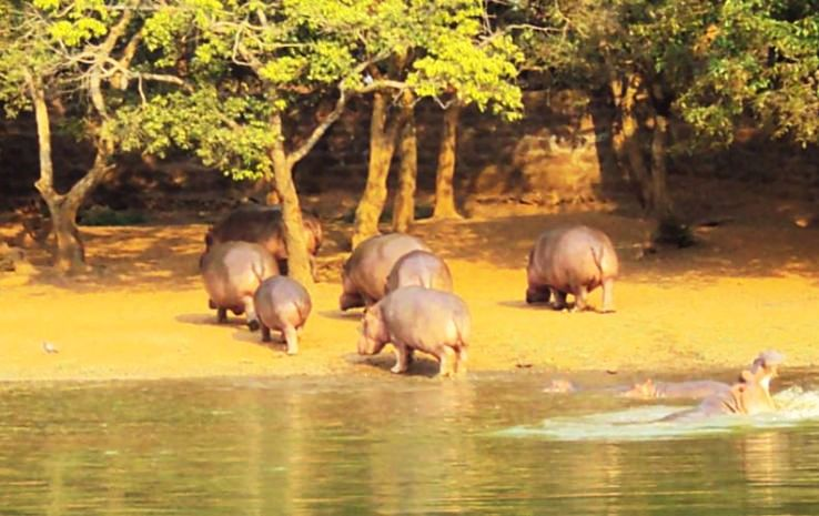 List of Zoos in India