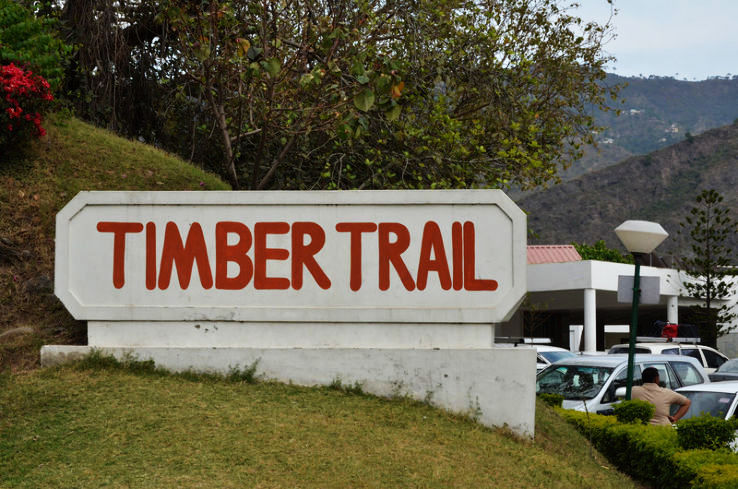 Timber Trail Guide For Tourists
