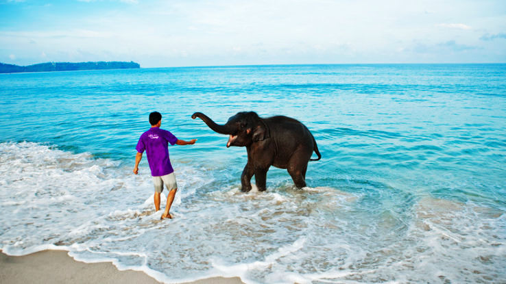 Famous One Day Picnic Spots In Andaman And Nicobar