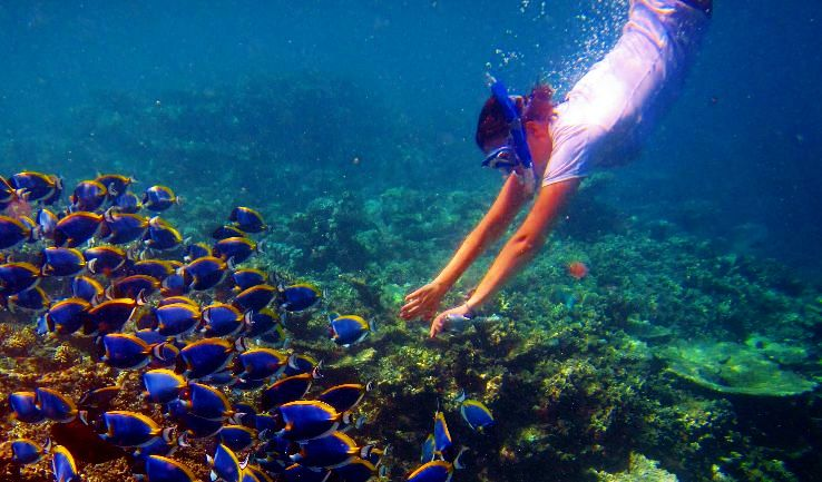 5 Water Sports In Maldives That Are Every Adventure Lovers Goal