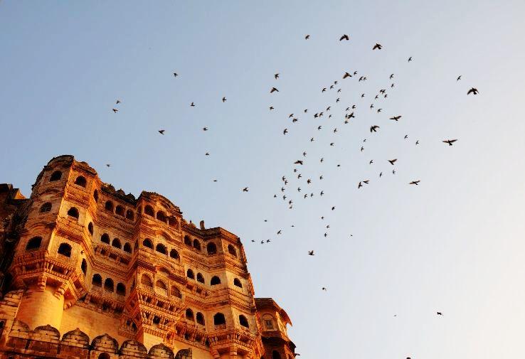 Mehrangarh_Fort_Jodhpur_(Detail)_1426325219u190.jpg