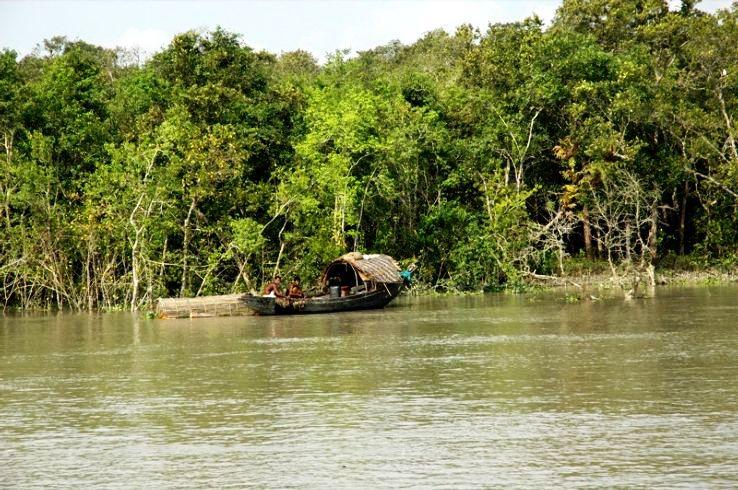 Sundarbans_1442308083u60.jpg