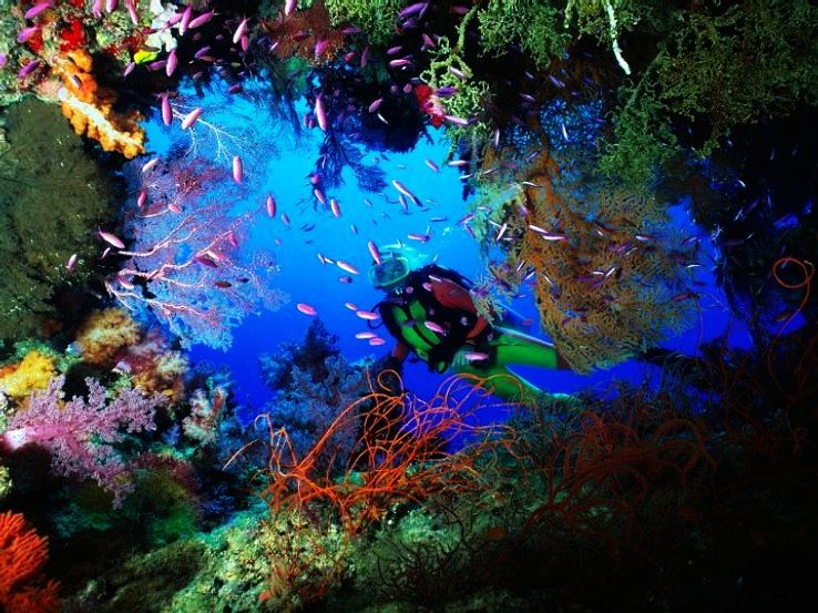 Places To Enjoy Scuba Diving In India