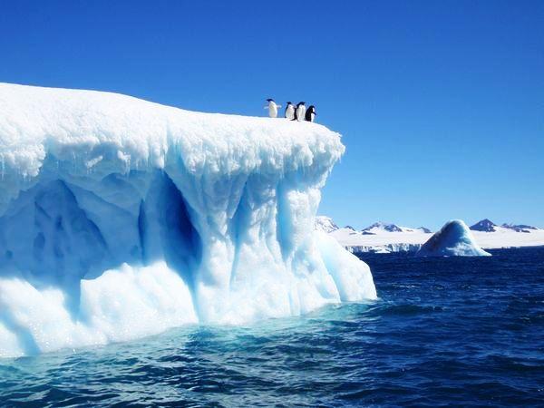 antarctica_0.jpg