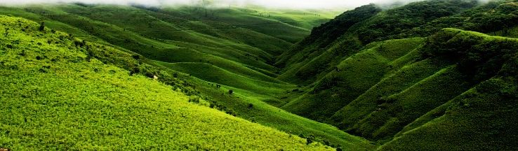 Are You A Solo Traveller Then Ziro Valley Must Make It To Your Bucket List