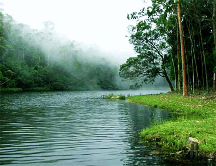This Village Near Munnar Has A Lake With Healing Powers