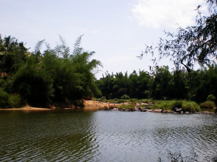 Places to look out for the serene aura of South India