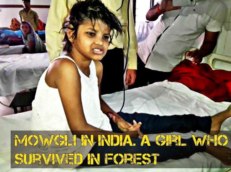 Meet the Mowgli of India, An 8 year Girl who survived forest in India.