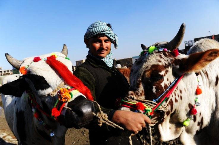 Knowing The Land Better Through The Colourful Festivals of Afghanistan