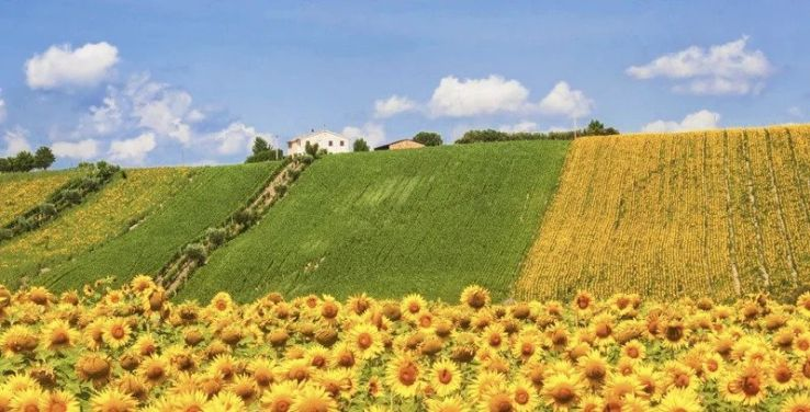 Why do you need to visit Le Marche, the Italian region you have never heard of