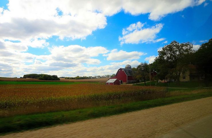 Why farm stays are the best for family vacation