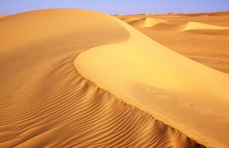 information-about-the-sahara-desert-for-kids-3.jpg